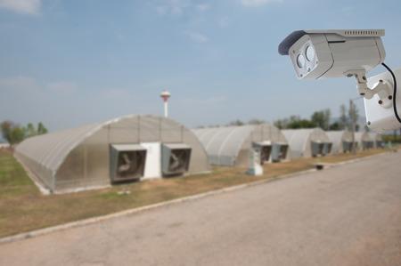 Monitoreo de cámara de seguridad El telón de fondo de desenfoque de fondo de granja orgánica.