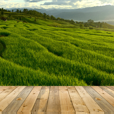 perspectives: empty wooden plank with Terraced rice field on Mountain background