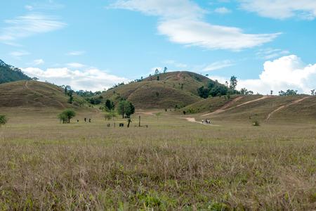 Bald mountain ,Grass Mountain, Grass Mountain is called Khao Hua Lon or Phu Khao Ya by the locals of Ranong Thailand. Stock Photo