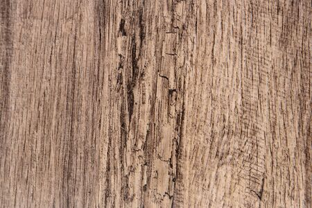 scored: Wood background texture of smooth wooden boards scored Stock Photo