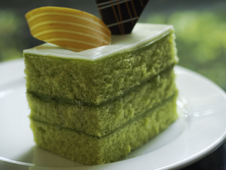kaya: Sponge Cake Layered in Rich Pandan Kaya. With a grated coconut for the finishing