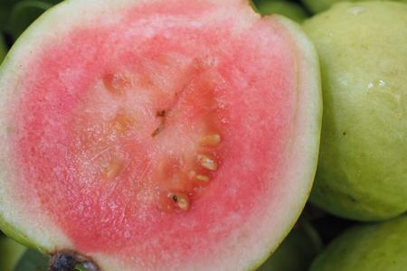 Jambu Merah atau Jambu Biji (Psidium Guajava Linn)