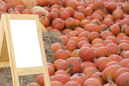 big behind: Message boards with white background behind big pumpkin blurred colorful background for display or editing products Stock Photo