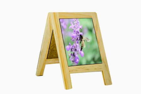 framed picture: Picture framed cork natural scenes Stock Photo
