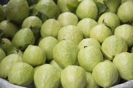eligible: Just a bite of fresh guava will make you eligible to receive a healthy