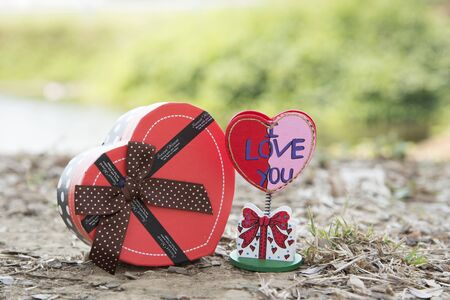 natural love: Signs of love with heart-shaped gift natural background