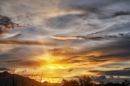Sunset natural landscape in the summer Soft Focus