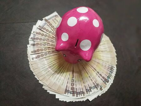 stockmarket: Piggy Bank lay a foundation for a better life.