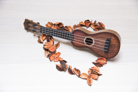 potpourri: Ukulele in Potpourri and sunflower on Texture background