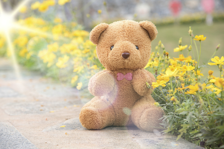 Teddy Bear on a soft pastel floral background.