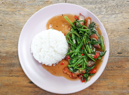 Water Spinach with rice on white plate, Vegetarian Food, healthy food 스톡 콘텐츠