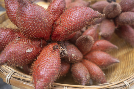 Salak fruit (SalaccaZalacca) for sell in market