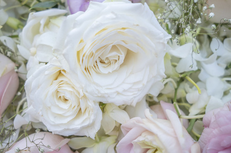 Many light colored roses for Mothers Day and Valentines Day