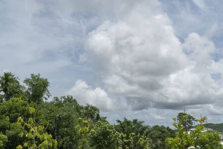 Garden and Cloud on the Natural background