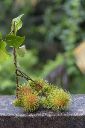 Fresh rambutan placed on a natural background