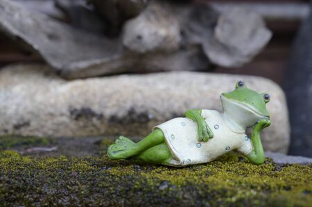 A frog model placed on a moss natural background