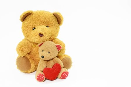 Brown teddy bear on the background with copy space