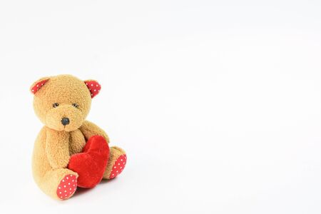 One brown teddy bear on the background with a copying area