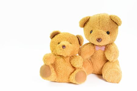 Teddy bear in Background with copy space