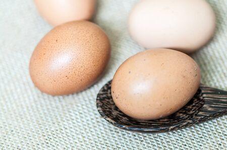gallina con huevos: huevos de gallina con cuchara de madera