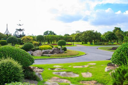 stone path: Garden stone path with grass and trees in park.