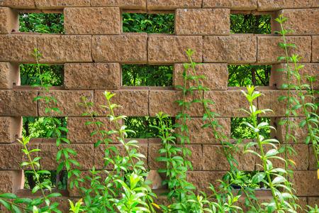 stone floor: Stone floor background pattern