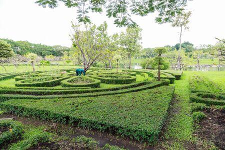 natural bridge state park: Tropical flower garden in Queen Sirikit Park Bangkok.