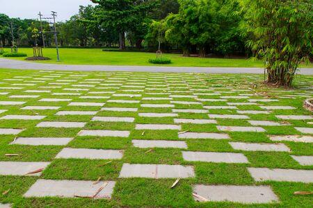 natural bridge state park: walkway view, Botanical garden, Queen Sirikit Park, Bangkok Stock Photo