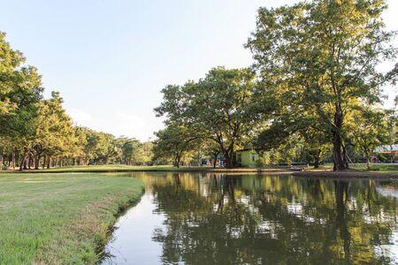 undisturbed: Garden landscaping Vachirabenjatas Park Rot Fai Park.