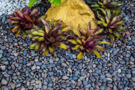 pebbles: Stones and Pebbles Texture Background Stock Photo