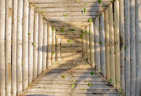nice background: bamboo closeup - nice background pattern