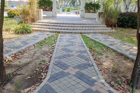 Beautiful walkway in park