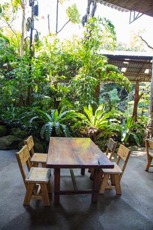 bench in garden setting, Summer scene Standard-Bild