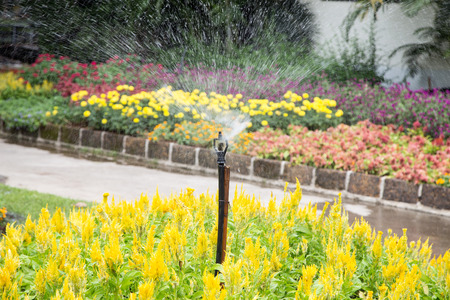Water spraying irrigation system being used in flower garden. Stock Photo
