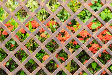 malla metalica: cerca de malla de metal antiguo sobre fondo floral.