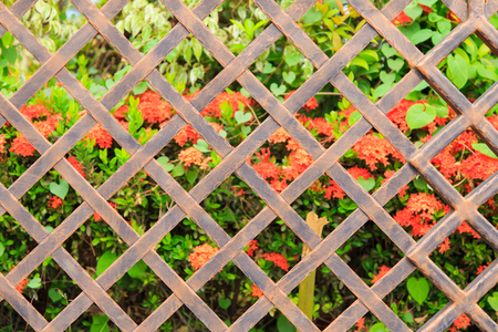malla metalica: Old Metal mesh fence against floral background.