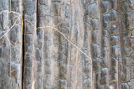 Details on the surface of charcoal. Foto de archivo
