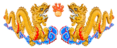 Twin dragons on isolated background  photo