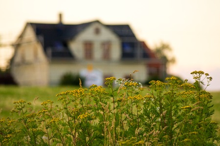 Blurred house with focused flowers. Concept: Rent, sell or buy home Reklamní fotografie - 68477583