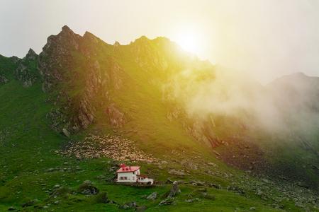 rumanian: SHEEP AND HOUSE NEAR MOUNTAIN PEAK
