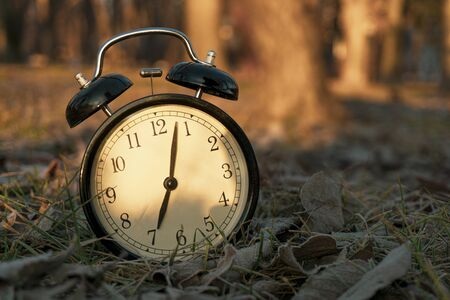 ALARM CLOCK IN THE MORNING IN THE FOREST WITH SUN Zdjęcie Seryjne