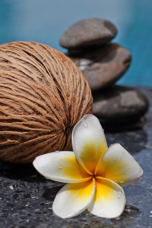 Frangipani flower and Zen style stone by the pool Stock Photo - 15533887