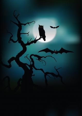 moon  owl  silhouette: Halloween illustration owl on moon background.