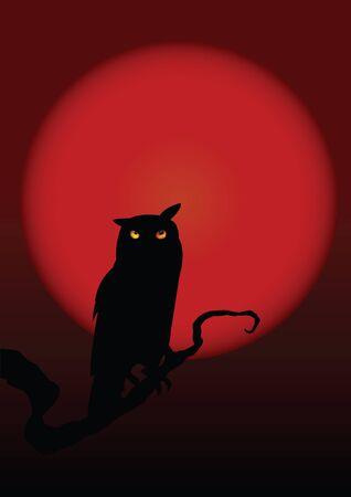 Halloween illustration owl on moon background