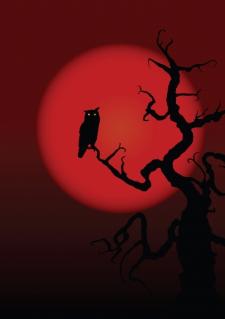 Halloween illustration owl on moon background. Vector