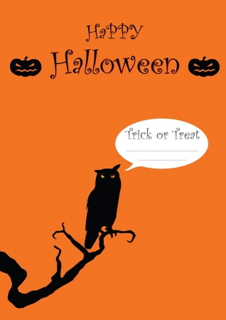 Halloween card with owl  Vector