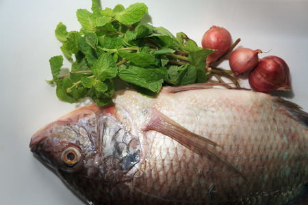 oreochromis: Nile tilapia fishes with vegetable