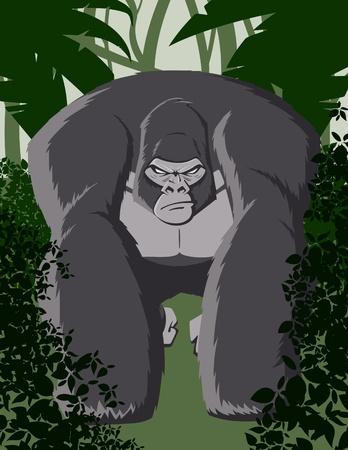 apes: Vector Cartoon Gorilla Illustration