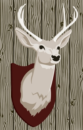 venado: Vector Montada Deer Head Vectores