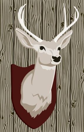 deer head: Vector Mounted Deer Head